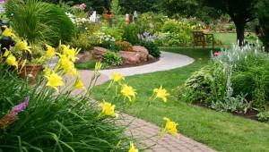 Garten & Pflanze